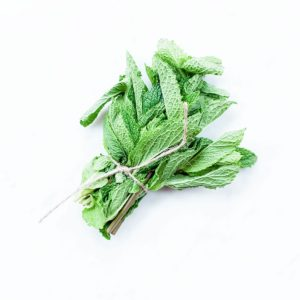 Fresh mint tied with twine on white background.