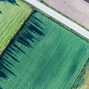 Farm fields from above.