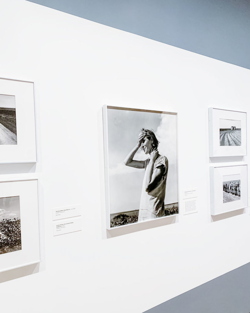 The Dorothea Lange exhibit at the Museum of Modern Art.