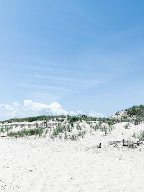 Beach dunes in Southampton, New York.